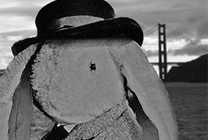 Bunz the Rabbit with the Golden Gate Bridge in the background